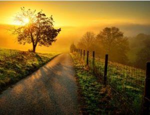 A New Day - Harmonie