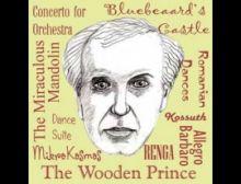 Concerto for Orchestra - Harmonie