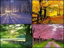 The Seasons - Fanfare